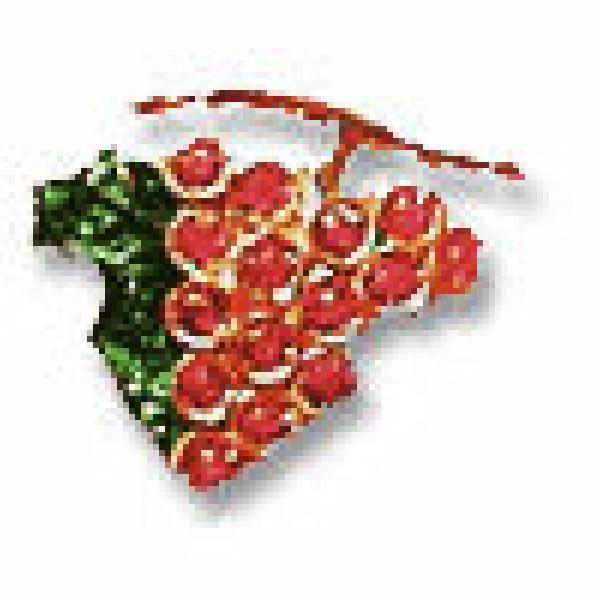 Grappolo in smalto e rubini assegnato al 1° vino classificato di ogni categoria